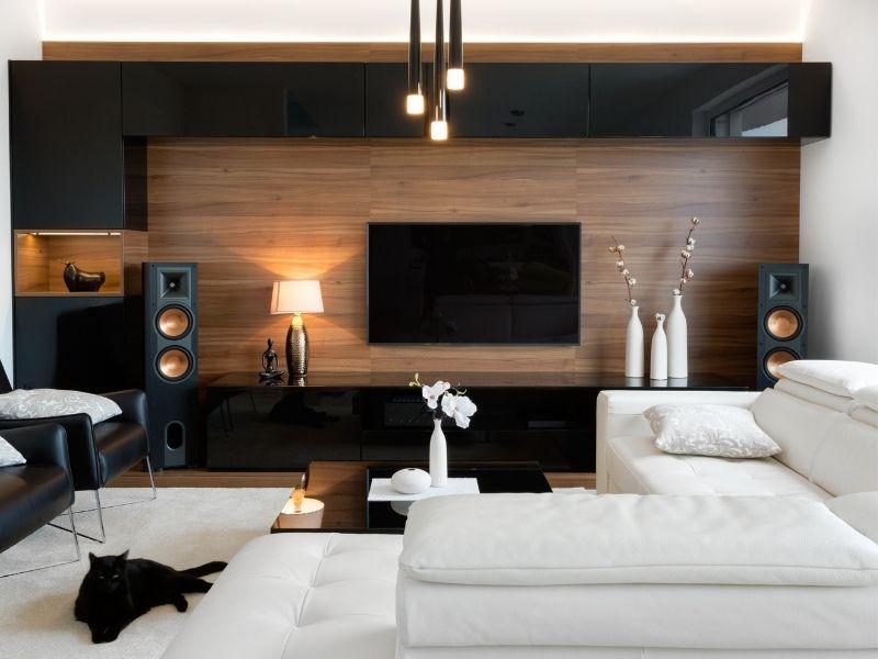 Home Entertainment System - Design Innovation